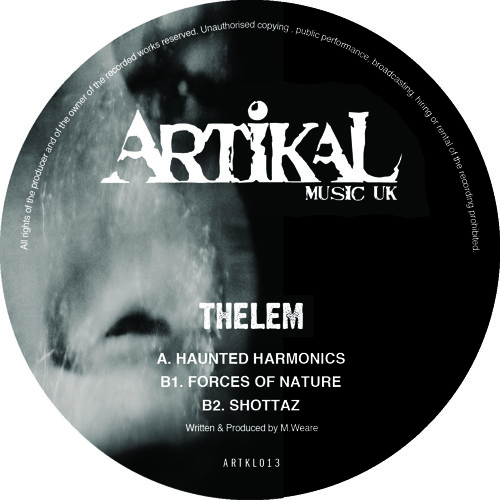 ARTKL013 - THELEM - FORCES OF NATURE (96kps)