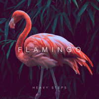 Flamingo Heavy Steps Artwork