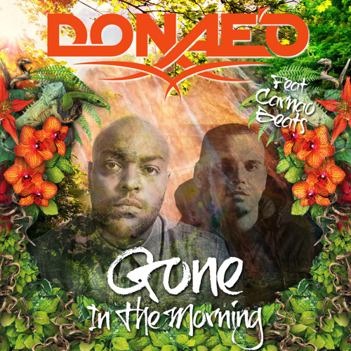 Donae'o ft Carnao Beats - Gone In The Morning (DJ Q Remix)