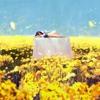 Owari he Mukau Hajimari no Uta ~ 【Dream】Cover