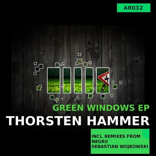 Thorsten Hammer - Green Windows (Negru Remix) / Snippet