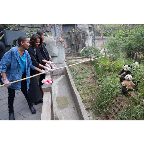 The First Lady's Travel Journal: Pandas!