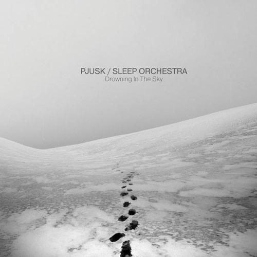 Pjusk / Sleep Orchestra - Rionzemef (Pleq Remix)
