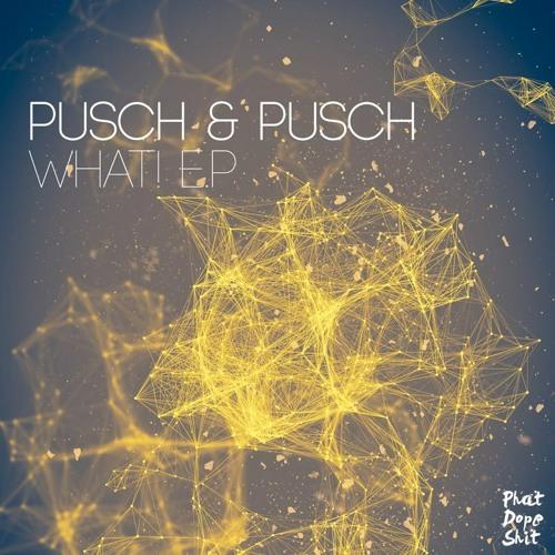 """Pusch & Pusch - What! """"Snippet"""""""