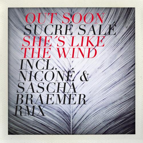 She's Like the wind (NIconé & Sasha Braemer Remix)