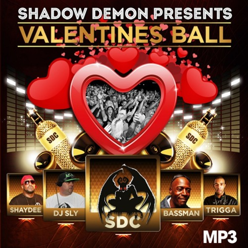 @ SDC Valentines Ball Birmingham 2014