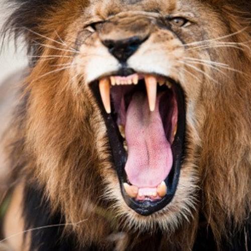 Lion Jawside (Instrumental)