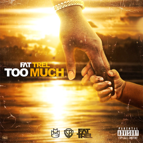 Too Much (GLEESH-MIX)