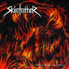 "SKINFATHER ""Drown In Black"""