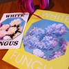 White Fungus Ron Hanson -home - Air - Public Html - Media -
