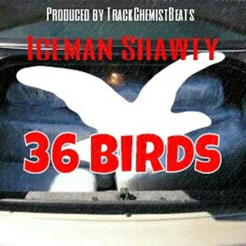 Prod by @trackchemistbeats - 36 Birds - Iceman Shawty