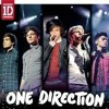 One Direction - I gotta feeling, stero hearts, Valerie and torn (Up all night tour)