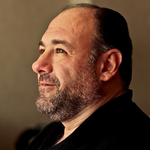 James Gandolfini alive and well onscreen in Enough Said