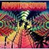 Raiz - Sonora Rumbatron ft. Agness