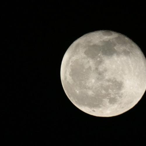 Moonlight Silence