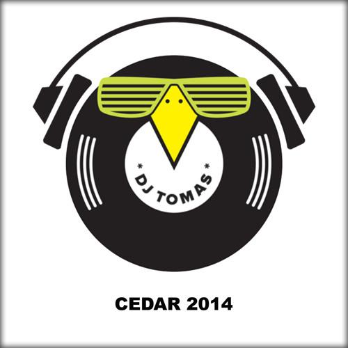 DJ TOMAS - Cedar (club mix)