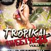 Tropikal Sweetness Vol.1 - Le Mix Zouk Love 2014