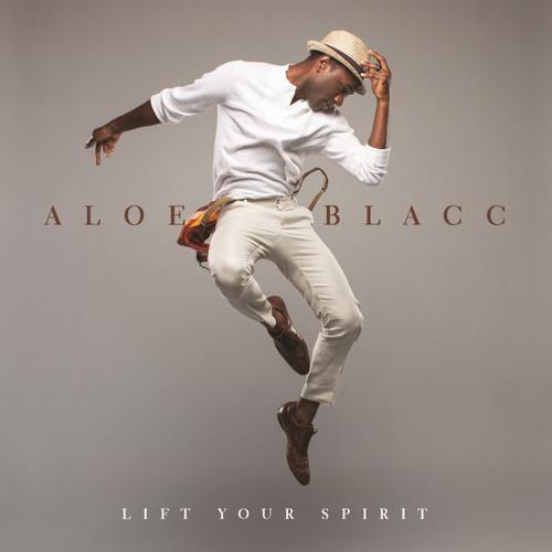 Dj Reem215 Ft Aloe Blacc- Im The Man
