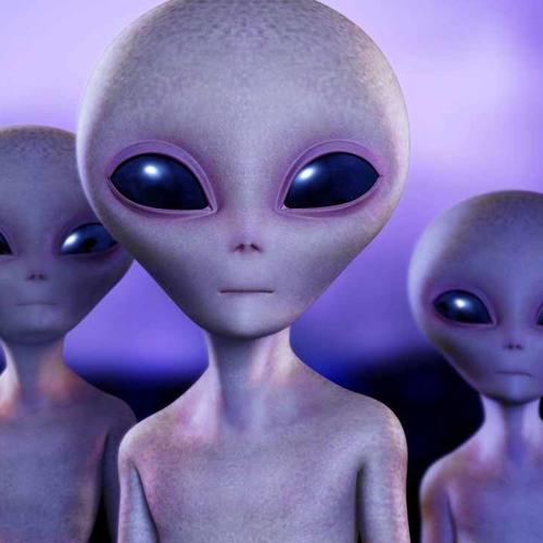I am who I am - Alien Gang