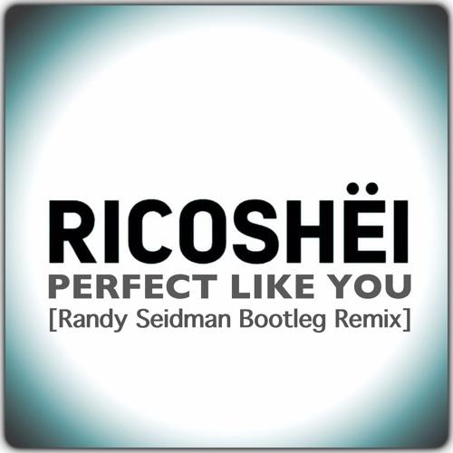 Ricoshëi - Perfect Like You (Randy Seidman Bootleg Remix) [Free Download]