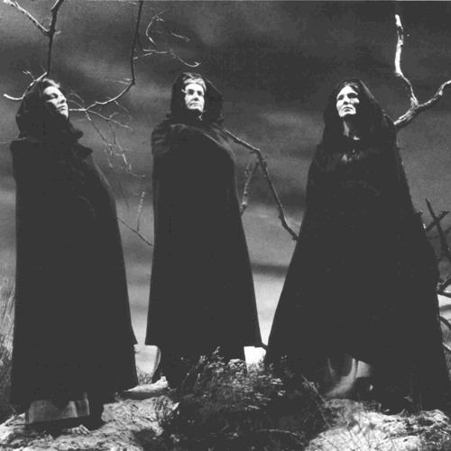 Witches of the Black Mountain