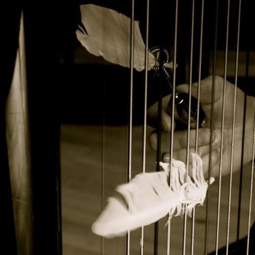 Inside the harp / GIB SIE WIEDER (PP 2014)