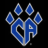 Cheer Athletics Panthers - Champions League 2014