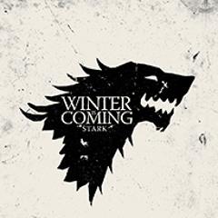 Duet Feeriya - Game Of Thrones [violin cover]
