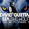 Duet Feeriya - She Wolf [violin cover]