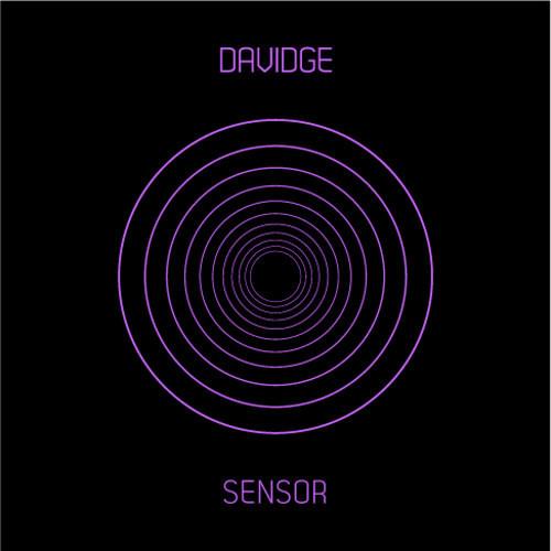 Neil Davidge - Sensor (Nebbra Remix)