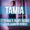 Tamia - Stranger In My House (John Gabrem Remix)