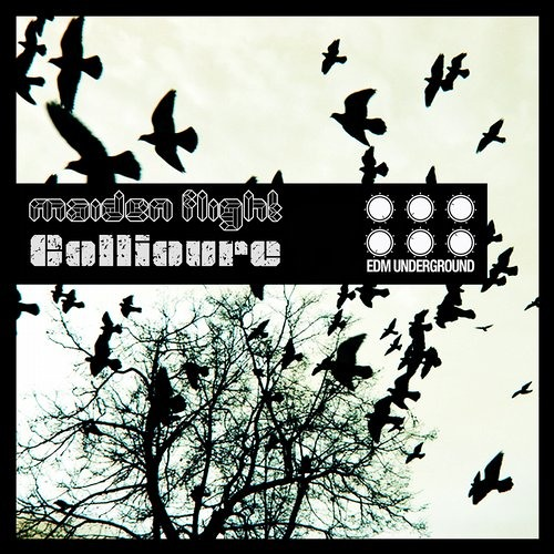 Collioure - Expose Yourself (Original Mix)Out Now on Beatport www.elektrikdreamsmusic.com