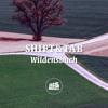 SHIFT&TAB - Wildensbuch (bassmusik015)