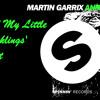 Martin Garrix - Animals ('All My Little Ducklings' Edit)