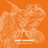 Kerri Chandler - Mama feat. Jerome Sydenham