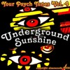 The Shivas - Your Psych Tunes Vol. 4 - Underground Sunshine - 11 Mr. Marmalade