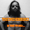 Thunderbird (ZZ Top Cover)