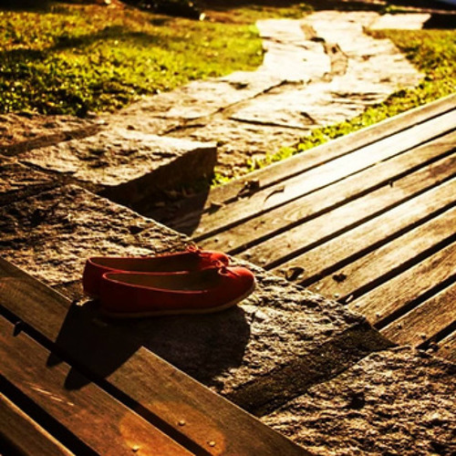 Barcamundi - A Grama Do Seu Jardim