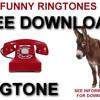 Donkey Ringtone