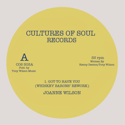 Joanne Wilson - Got To Have You (Whiskey Barons' Rework)
