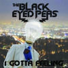 The Black Eyes Peas - I Gotta Feeling (andrewVN remix)