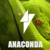 Ravejunkies - Anaconda (Original Mix) [Free Download]