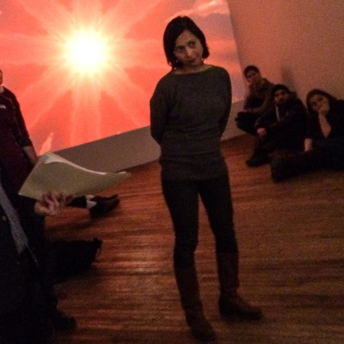 Expanded Earthly World Vox Populi Gallery Talk with Richard Torchia