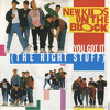 New Kids On The Block - You Got It (The Right Stuff) (Cover by Michael Firestone - 1989)