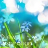 New Inspiration - Positive Inspirational Background Music for Video