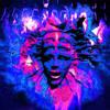Shpongle - The Sixth Revelation