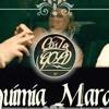 Costa Gold  - Alquimia Marginal