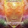 Boom Shankar - Interconnected [Resurrected Summer 2014 Mix]