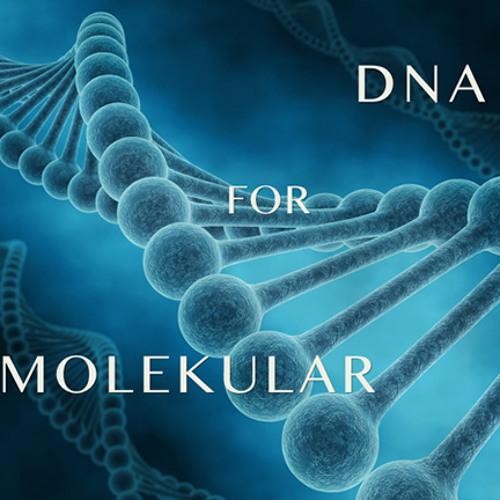 DNA For Molekular - Snapshot Bank for Reaktor - Demo collection