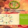 Frecuencia Solfeggio 528 Hz MI Para La Transformacion Y Reparación Del ADN[1]